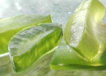 come-utilizzare-le-foglie-di-aloe-vera